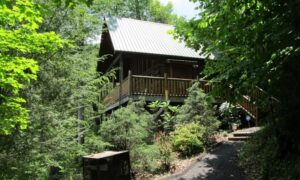 Top Mountain Cabin In Sevierville
